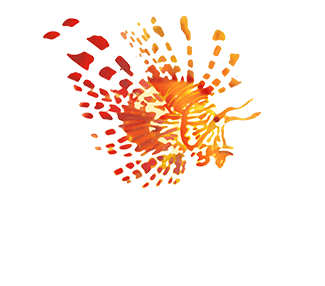 Lionfish Advertising Evansville Marketing